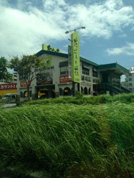 Japanese Organic Buffet